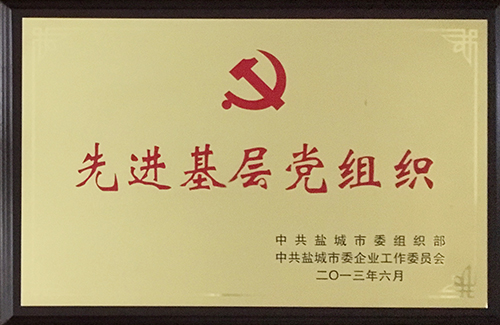 2013年6月 先进基层党组织.JPG