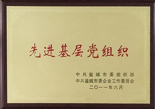 2011年6月 先进基层党组织.JPG